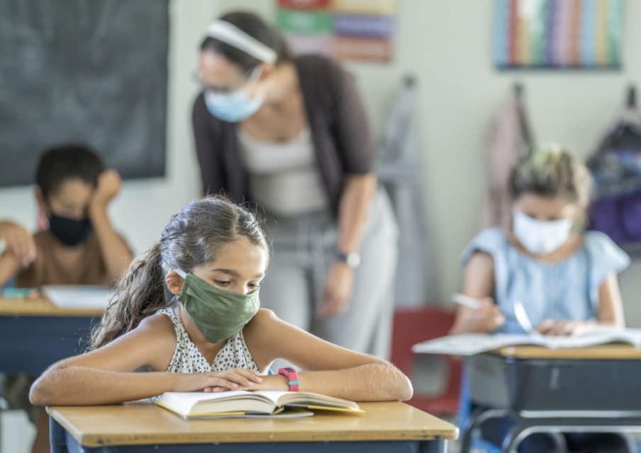 pratiques pédagogiques en école primaire